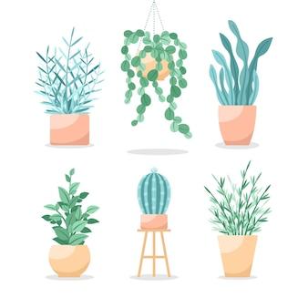 Zbiór różnych zielonych roślin doniczkowych