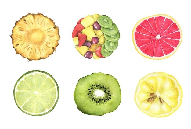 Zbiór świeżych owoców. widok z góry. akwarela ilustracja.