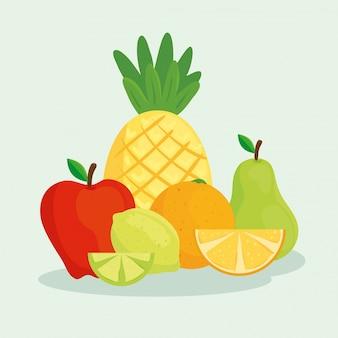 Zbiór tropikalnych świeżych i zdrowych owoców