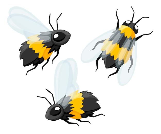 Zbiór trzech kreskówka słodkie pszczoły. przyjazne pszczoły. mucha obiekt dzikich owadów. ilustracja na białym tle