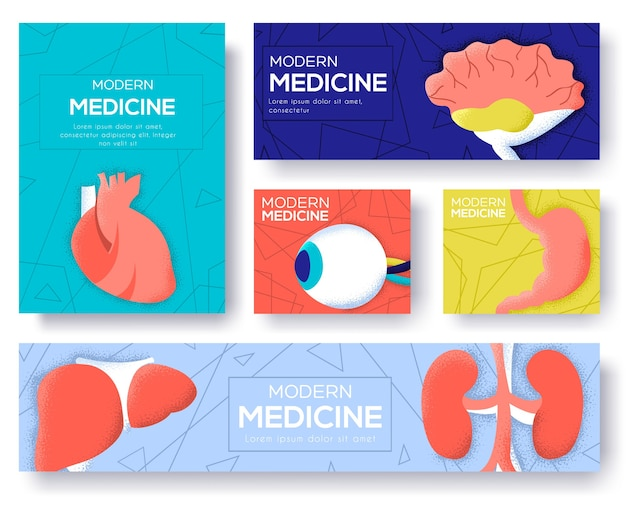 Zbiór ulotek na temat narządów ludzkich