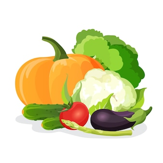 Zbiór warzyw na białym tle. ilustracja jedzenie wegetariańskie naturalne witaminy. purpurowy bakłażan, czerwony pomidor, zielona kapusta, smaczny ogórek, pyszny kalafior, łodyga dyni i szparagów
