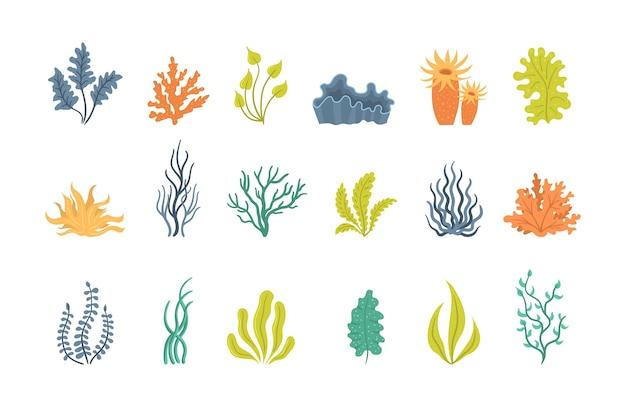 Zbiór wodorostów, podwodnych roślin morskich, muszli. wodorostów, sadzenia, sylwetki alg morskich i koralowców oceanicznych. zbiór alg kreskówek.