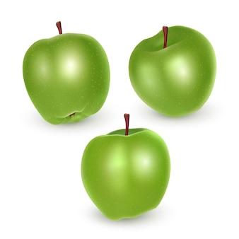 Zbiór zielonych jabłek