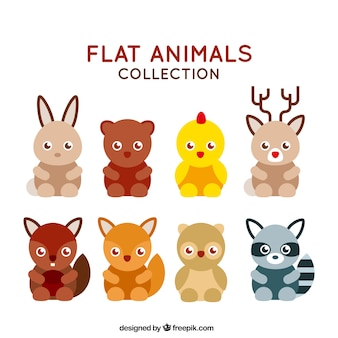 Zbiór zwierząt płaska