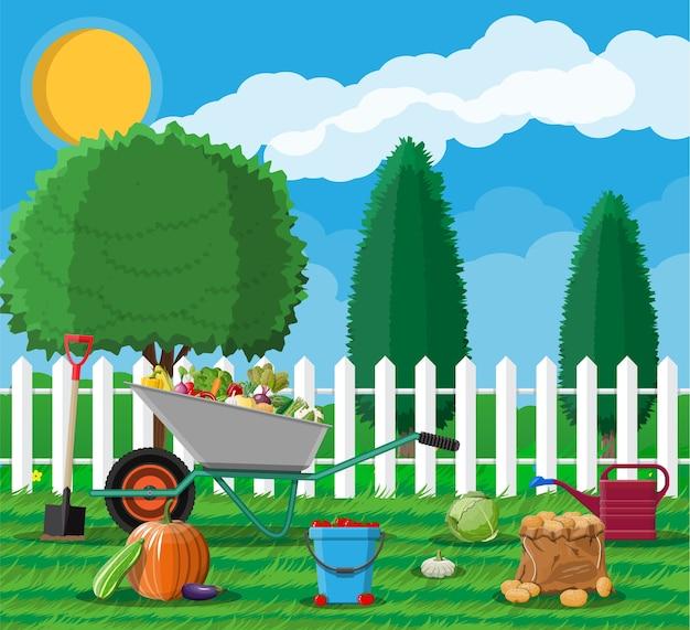 Zbiory ogrodnicze z warzywami i różnymi sprzętami ogrodniczymi, narzędziami.