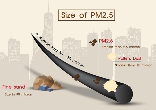 Zbliżenie i przykład ludzkiego włosa w porównaniu z wielkością pyłku, drobnego piasku i pm2,5 na tle krajobrazowego widoku miasta. plakat infografiki o toksycznym pyle pm2,5 w projekcie wektorowym.