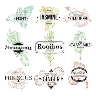 Zdrowa organiczna i naturalna herbata, ziołowy asortyment aromatycznych napojów. mięta i jaśmin, dzika róża i trawa cytrynowa, rooibos i rumianek, hibiskus i imbir. etykieta lub godło, wektor w stylu płaski