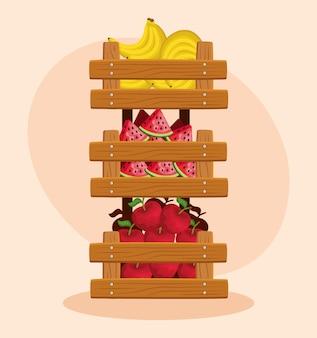 Zdrowe banany i arbuzy z owocami jabłkowymi