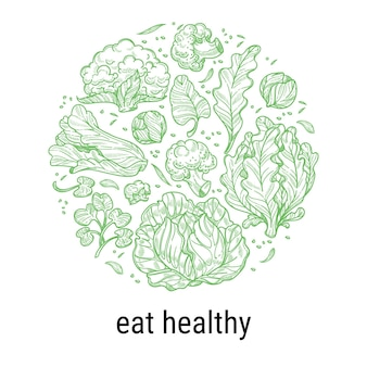 Zdrowe odżywianie i dieta, odżywianie i odżywianie wegan i wegetarian. liście kapusty i sałaty, sałata i szpinak w kółko. szkic etykiety konspektu z napisem, wektor w stylu płaski