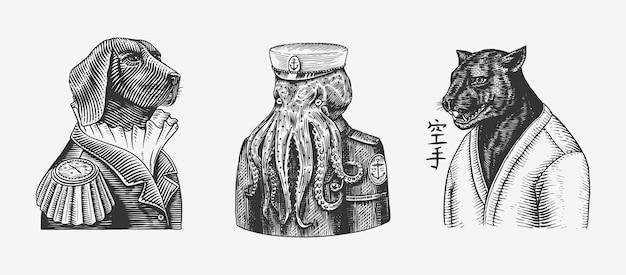 Żeglarz octopus. oficer psa. czarna pantera