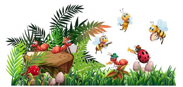Zespół muzyczny owadów grający w naturze