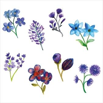 Zestaw akwarela fioletowy i niebieski dziki kwiat sezonu wiosennego na kartkę z życzeniami