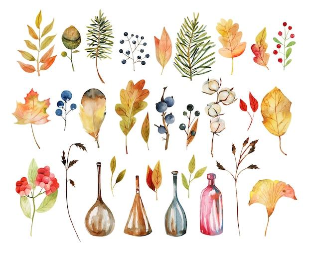 Zestaw akwarela jesienne liście roślin, kwiaty bawełny, żółte liście drzew, jesienne jagody, liście dębu i żołędzie, butelki