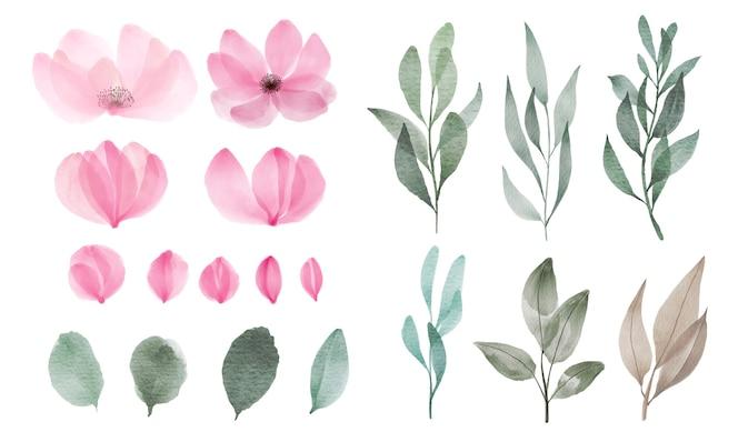 Zestaw akwarela kwiatów i liści do dekoracji karty okolicznościowej i zaproszenia.