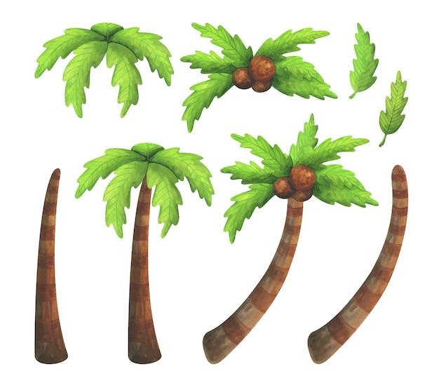 Zestaw akwarela tropikalnych drzew z kokosami