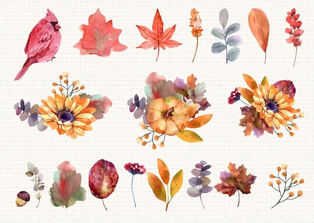 Zestaw akwarele jesienne elementy kwiatowy