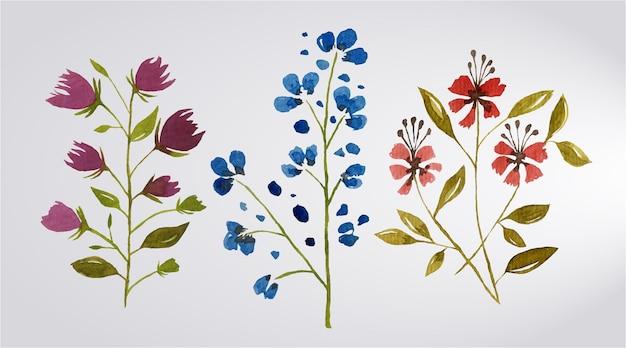 Zestaw akwareli i kwiatów i liści