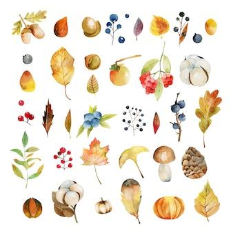 Zestaw akwareli jesiennych liści roślin, kwiatów bawełny, żółtych liści drzew, jesiennych jagód, liści dębu i żołędzi, szyszek jodły i grzybów