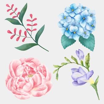 Zestaw akwareli kwitnących kwiatów