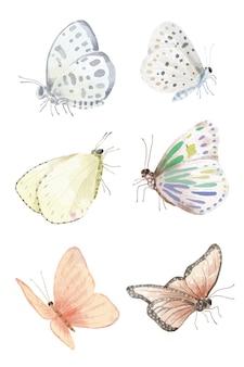 Zestaw akwareli obiektu różnych motyli