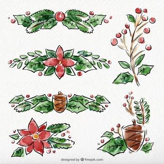 Zestaw akwareli ręcznie narysowanych poinsecja i pinecone