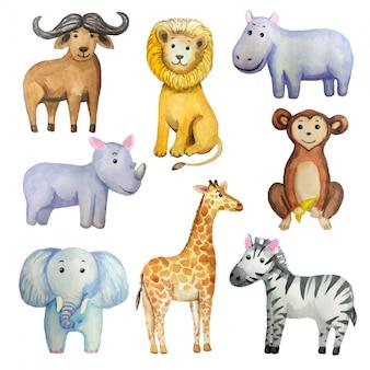 Zestaw akwareli tropikalnych zwierząt egzotycznych: słoń, żyrafa, lew, małpa, zebra, hipopotam, nosorożec, bawół.
