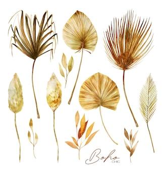 Zestaw akwarelowych złotych i brązowych suszonych liści palmowych wachlarza, trawy pampasowej i egzotycznych roślin