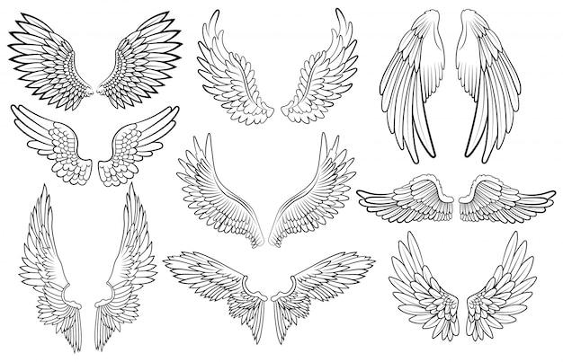 Zestaw anielskich skrzydeł. kolekcja skrzydeł z piórami. czarno biała ilustracja.