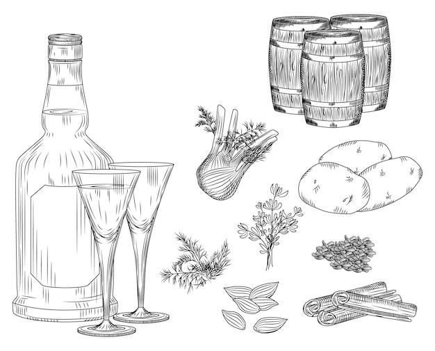 Zestaw aqua vitae alkoholu na białym tle. szkło i butelka, ziemniaki, koper, pietruszka, koper, cynamon, kardamon, anyż, beczki. grawerowanie styl vintage czarny zarys ilustracji wektorowych.