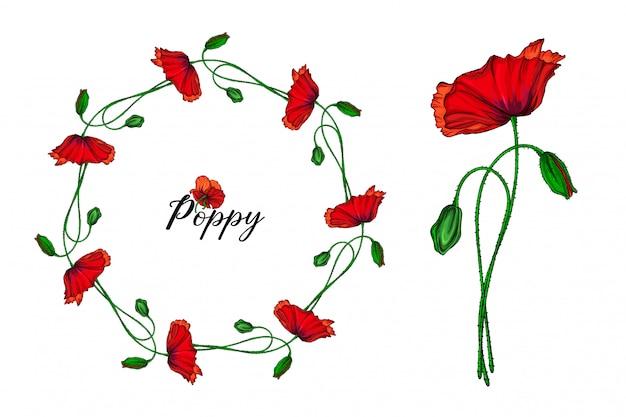 Zestaw aranżacji kwiatowych z czerwonymi kwiatami maku