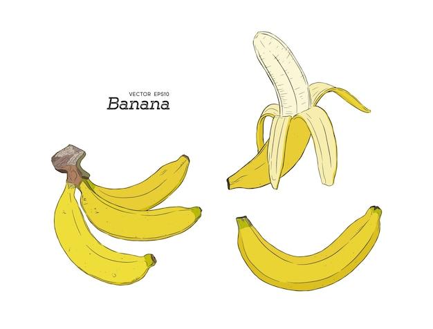 Zestaw bananów