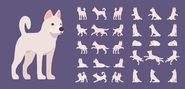 Zestaw białego psa