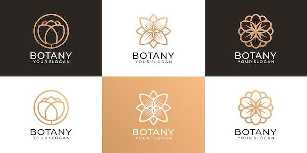 Zestaw botaniki uroda kwiat kobiecy logo wektor