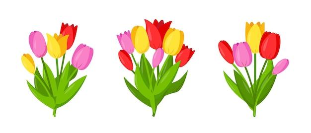 Zestaw bukietów tulipanów. elementy kwiatowe do projektowania wiosennego lub świątecznego.