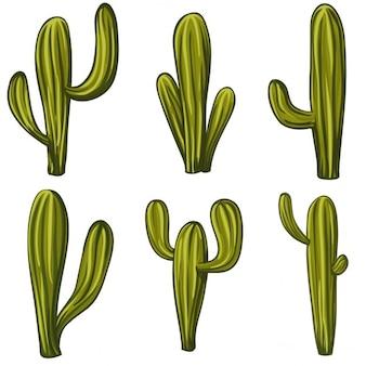 Zestaw cartoon kaktusy