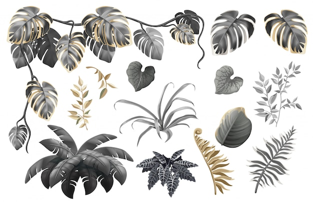 Zestaw ciemnych, złotych i srebrnych liści i roślin.
