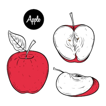 Zestaw clipartów czerwone jabłko plasterek na ręcznie rysowane stylu