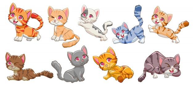 Zestaw clipartów kota