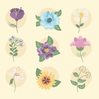 Zestaw clipartów kwiaty