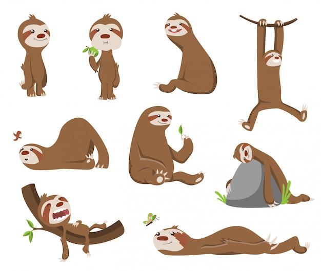 Zestaw cute baby lenistwo. urocze zwierząt kreskówek. leniwce śmieszne kreskówki w różnych pozach. ładna leniwa postać ilustracja