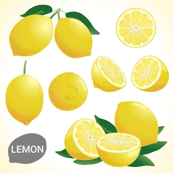 Zestaw cytryny w różnych stylach format wektorowy