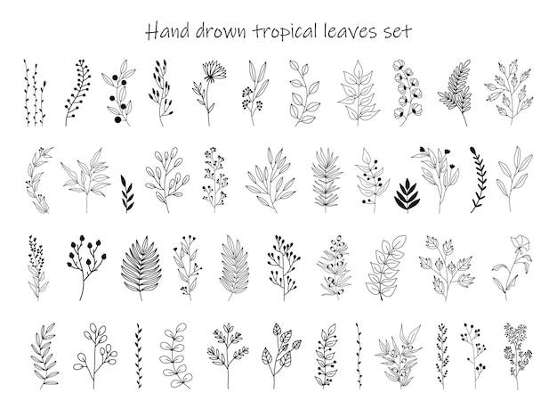 Zestaw czarne sylwetki tropikalnych liści
