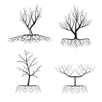Zestaw czarnych drzew i korzeni