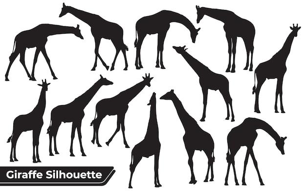 Zestaw czarnych sylwetek żyraf