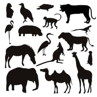 Zestaw czarnych zwierząt tropikalnych i sylwetki ptaków.