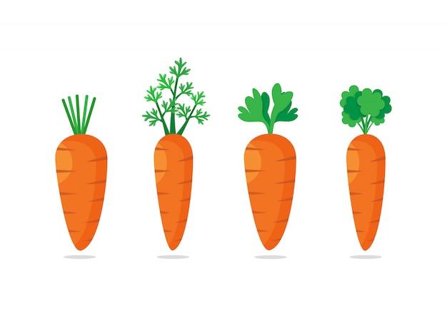 Zestaw czterech marchewek z zielonymi liśćmi. słodki warzywo, płaska ikona ilustracja
