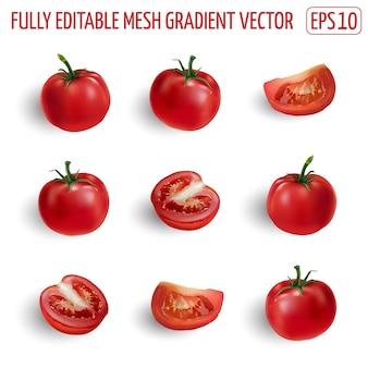 Zestaw dojrzałych czerwonych pomidorów - całe, pół i plastry. realistyczna ilustracja.