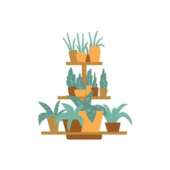 Zestaw domowych roślin zielonych w doniczkach sprzedawanych w kwiaciarniach do dekoracji wnętrz