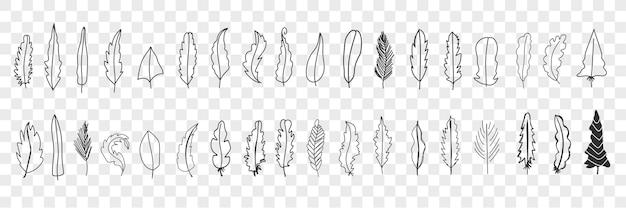 Zestaw doodle różnych ptasich piór. kolekcja ręcznie rysowane słodkie eleganckie sylwetki i wzory piór z różnych ptaków na białym tle.